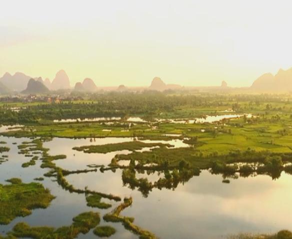 会仙湿地:生态美景惹人醉