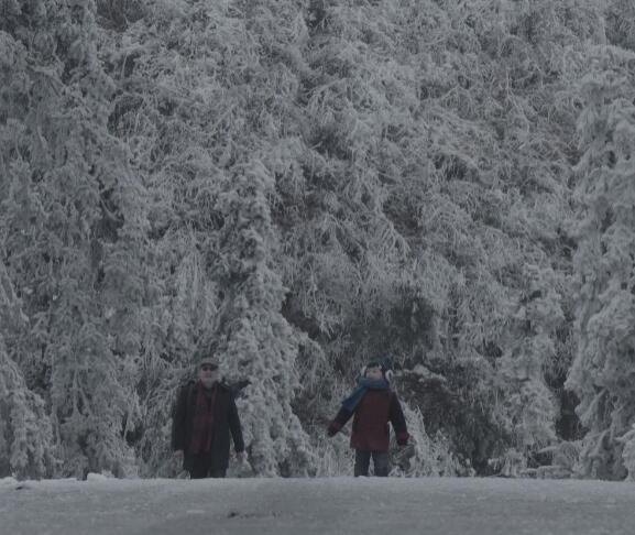 《江上冬之韵》