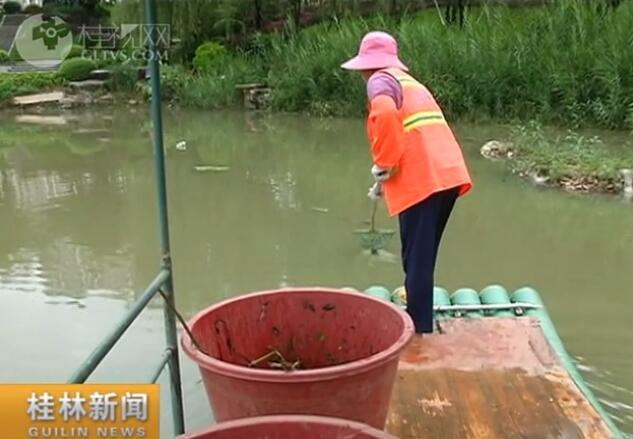 【创建全国文明城·喜迎党的十九大】临桂:环卫工人水上作业护市容
