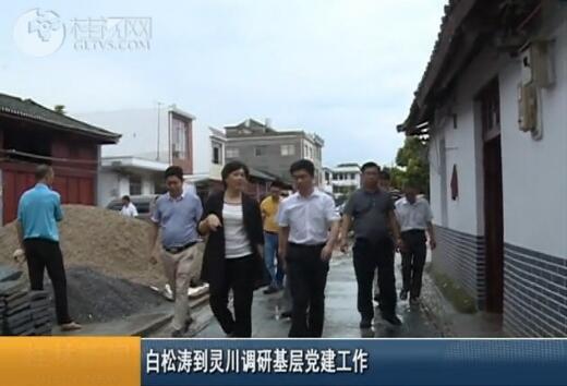 白松涛到灵川调研基层党建工作