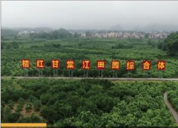 灵川:聚焦精准 帮扶群众脱贫致富路越走越宽