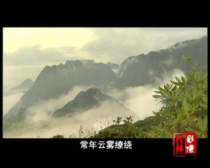 华南第一高峰猫儿山――广西兴安